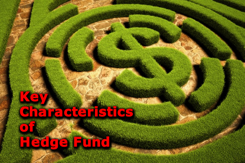 Key Characteristics of Hedge Fund as an Investment Opportunity